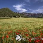 Bergueda - Capolat