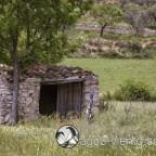 Organya landscape - small house in landing zone
