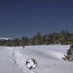 Katalonien Landschaft - Bergueda / Rasos de Peguerea im Winter